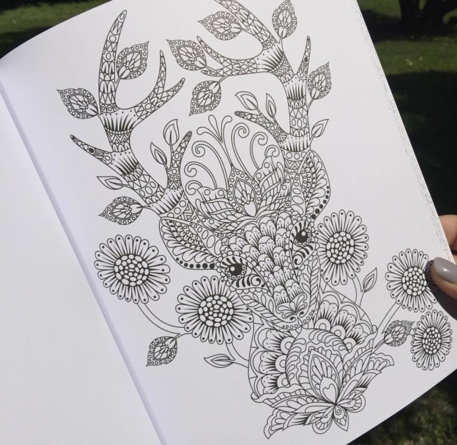 tula coloring book open