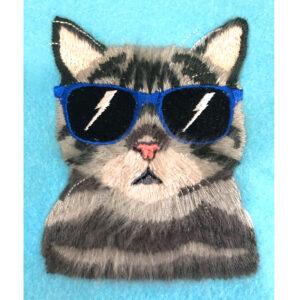 Peekaboo Pets Cool Cat