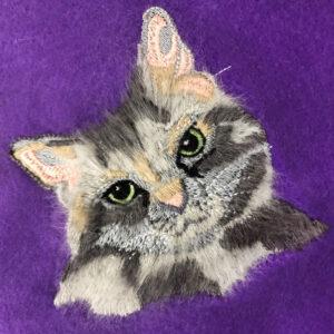 Peekaboo Pets Curious Cat