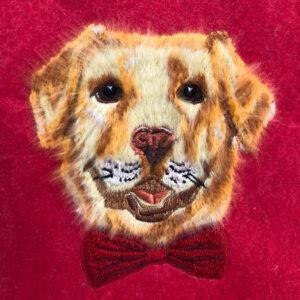 Peekaboo Pets Dapper Dog